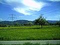 Landschaft in Vörstetten - panoramio.jpg