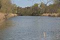 Landschaftsschutzgebiet Altarme der Saar 07.jpg