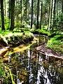 Landschaftsschutzgebiet Eisenbach.jpg
