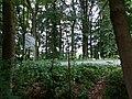 Landschaftsschutzgebiet Warmenau-Ufer LSG OS 00019 Datei 46.jpg