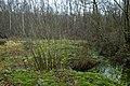 Landschap De Stroopers te Kemzeke - 372030 - onroerenderfgoed.jpg