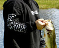 Largemouth Bass Fishing.jpg