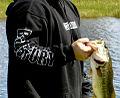 Largemouth Bass Fishing.jpg