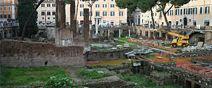 Largo di Torre Argentina - Wide view showing conservation work in progress.