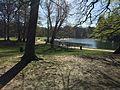 Le bois de la Cambre14 Avril 2016.jpg