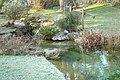 Le jardin botanique de Genève en hivers 02.JPG
