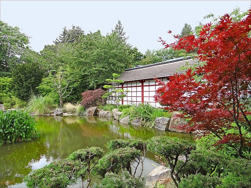 File le jardin japonais le de versailles nantes jpg wikimedia commons for Jardin japonais nantes