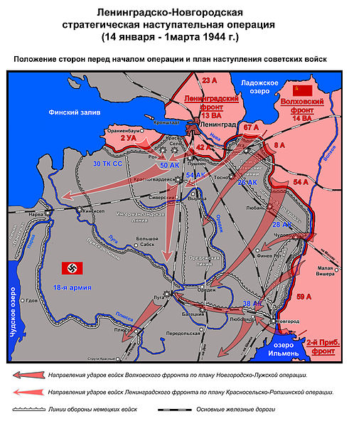 File:Leningradsko Novgorodskaya operatsya 1944 1 polozhenie storon.jpg