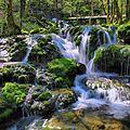 Les Planches-près-Arbois, cascade de la petite source de la Cuisance.jpg