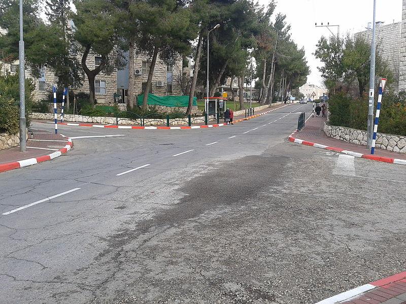 File:Les colonies dans Hebron, Cisjordanie (15575710494).jpg