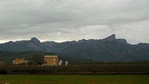 Cardó Massif - Image: Lesmoles 4mc