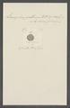 Leucophra posthuma - - Print - Iconographia Zoologica - Special Collections University of Amsterdam - UBAINV0274 113 16 0016.tif