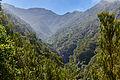 Levada do Caldeirão Verde, Madeira (09611).jpg