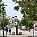 Liberty Avenue (Miami Beach, Florida).jpg
