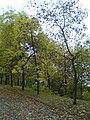 Lieninski District, Mogilev, Belarus - panoramio (19).jpg