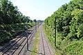 Ligne Mâcon Ambérieu près Chemin Prairie St Jean Veyle 5.jpg