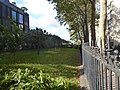 Ligne d'Auteuil boulevard Flandrin vue vers la station Avenue Foch.jpg