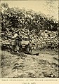 Lion and dragon in northern China (1910) (14780951371).jpg