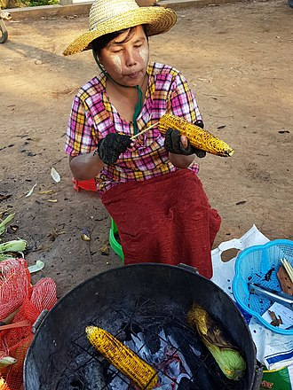 Corn on the cob - Preparing roasted corn on the cob in Loikaw (Myanmar).