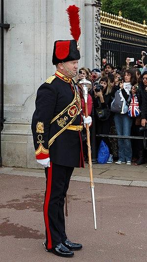 Royal Artillery Band - Royal Artillery Band: drum major on duty at Buckingham Palace.