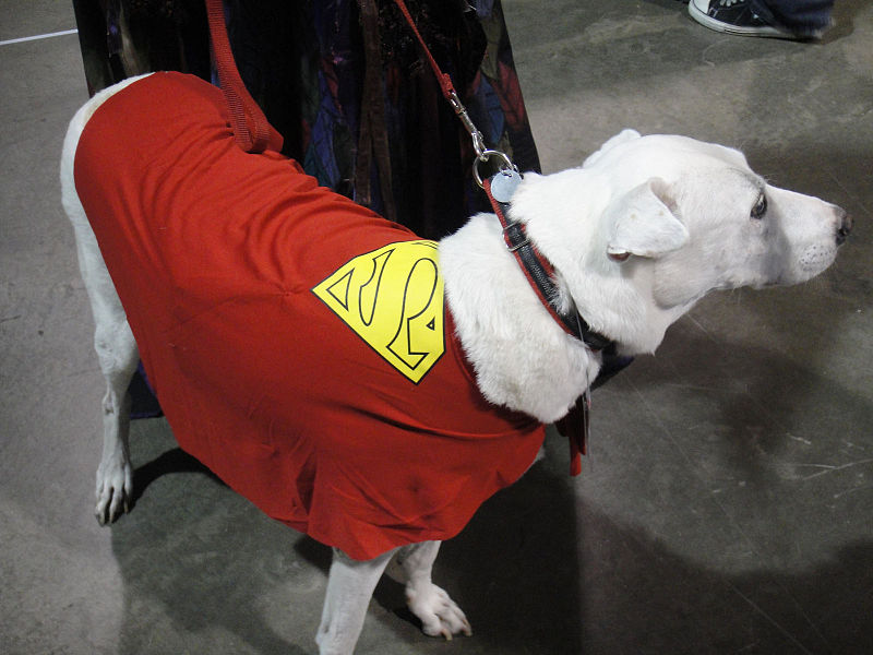 File:Long Beach Comic & Horror Con 2011 - Krypto, the Super Dog (6301707368).jpg