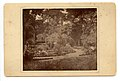 Longfellow House Garden, taken from north side, looking to north ell, 1890 (b8f771da-64c1-41e4-9093-1fffb5126e15).jpg