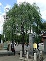 Lost Guide Stone and willow tree in Sensoji Temple.jpg