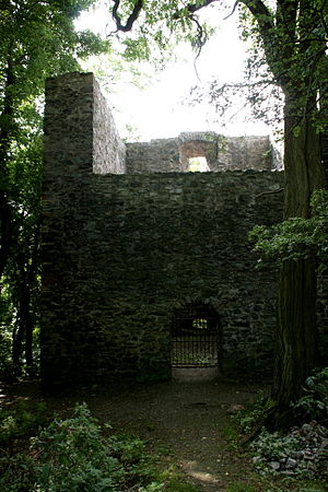 Frankenstein Castle - Frankenstein forest