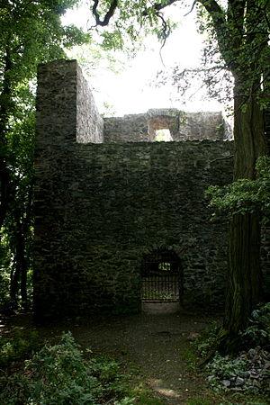 Frankenstein Castle - Frankenstein forest