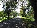 Mažėnai 30283, Lithuania - panoramio (3).jpg