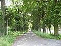 Maasmechelen Leut Dreef Kasteelpark Vilain XIIII Dreef - 203889 - onroerenderfgoed.jpg