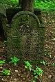 Macewy na cmentarzu cholerycznym - panoramio.jpg