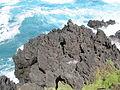 Madeira em Abril de 2011 IMG 1501 (5661833846).jpg