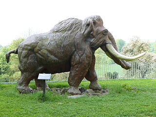 Max the Mammoth of Monrepos