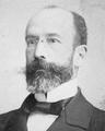 Manuel de Sousa Avides (Arquivo Histórico Parlamentar).png
