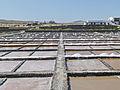 Marine water saline - Salinas del Carmen - Museo de la Sal - Fuerteventura - Canary islands - Spain - 14.jpg