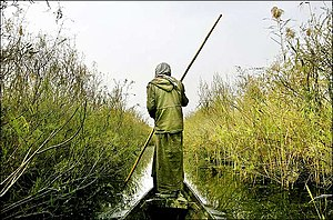 Marsh Arabs - Marsh Arab