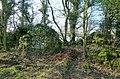 Martnaham Castle ruins, East Ayrshire.jpg