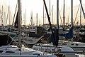 Masts at Monterey (3480130566).jpg