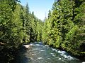 McKenzie River from Deer Creek Road Bridge.jpg