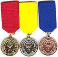 Medalia Pentru Serviciul Impecabil în Armata Națională.jpg