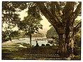 Meeting of the waters, Vale of Avoca. County Wicklow, Ireland LOC 4427394818.jpg