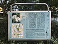 Memorial plaque for Japan-U.S. friendship initiatives of 1912 and 1915.jpg