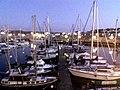 Milford Marina.jpg