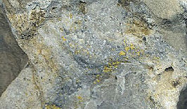 Mineraly.sk - auripigment.jpg