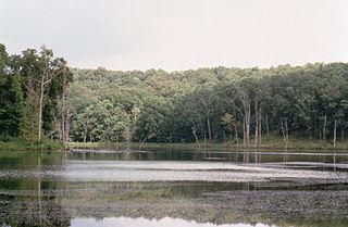 Type habitat