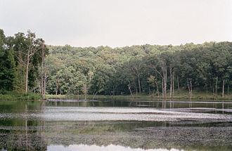 Mingo National Wildlife Refuge - Mingo NWR