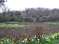 Monaghan, County Fermanagh - geograph.org.uk - 748753.jpg
