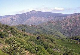 Mont Aigoual Est.jpg