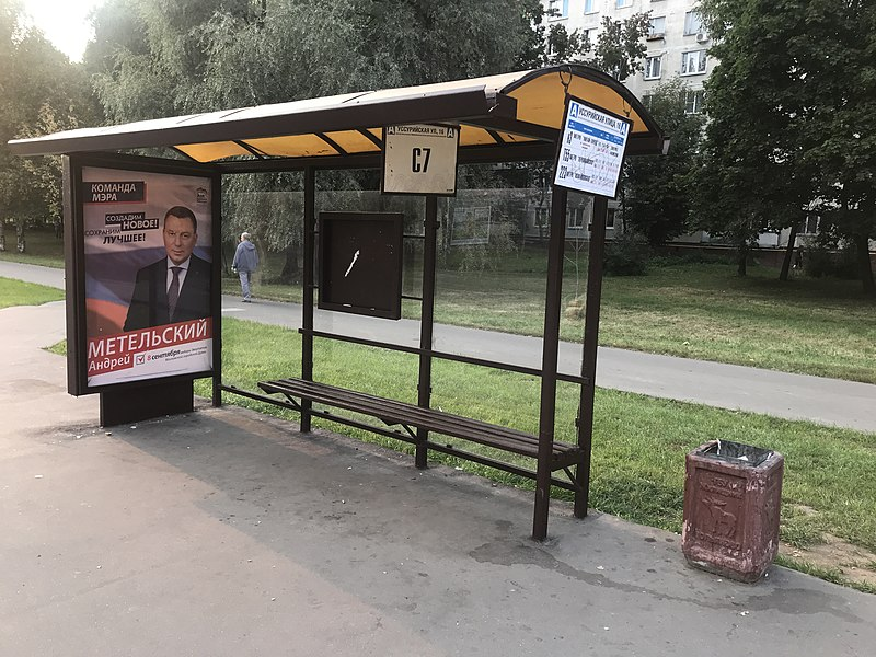 Moscow City Duma election, 2019 okrug 15 - 3.jpg